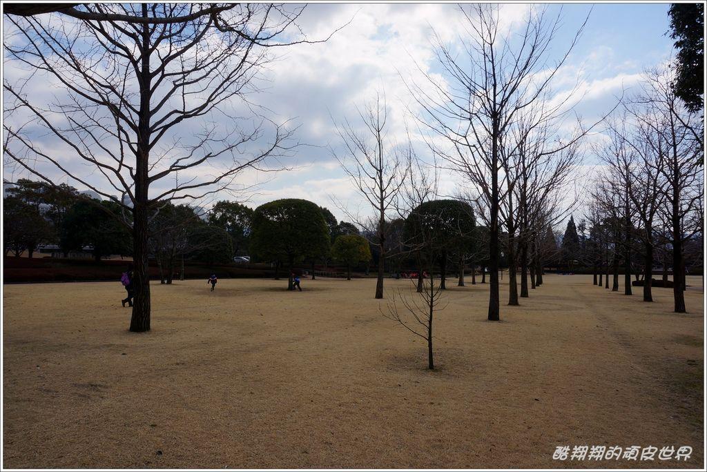 中央綠地公園-02.JPG