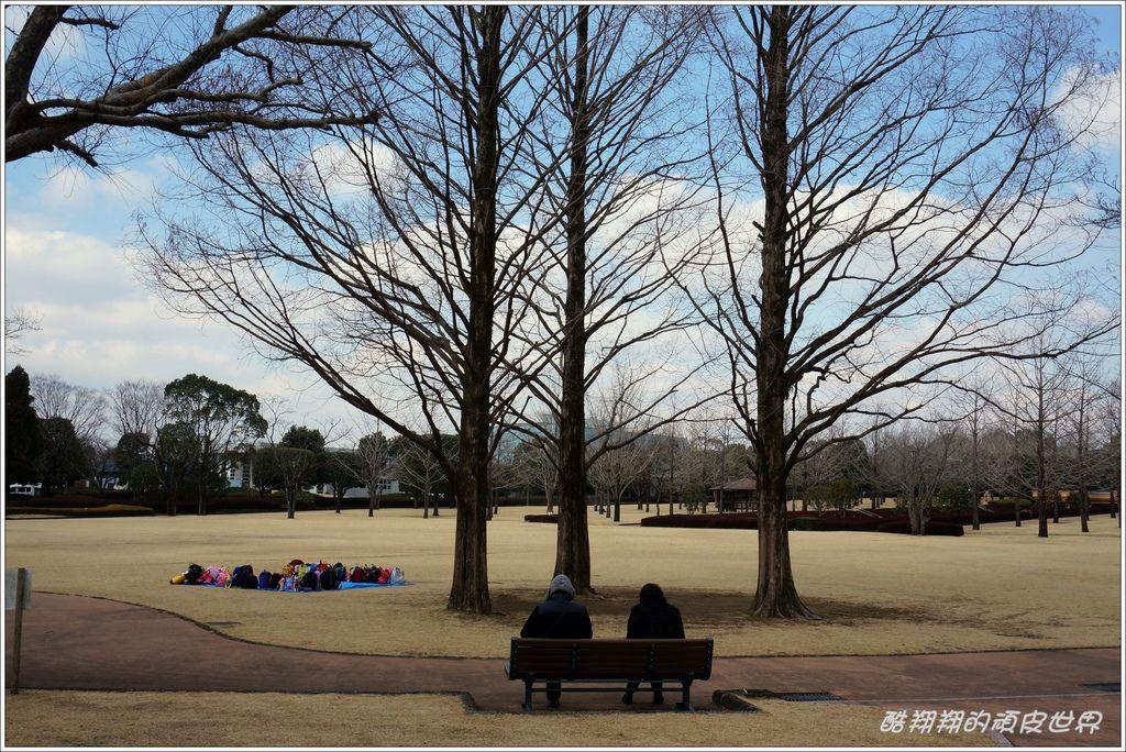 中央綠地公園-08.JPG