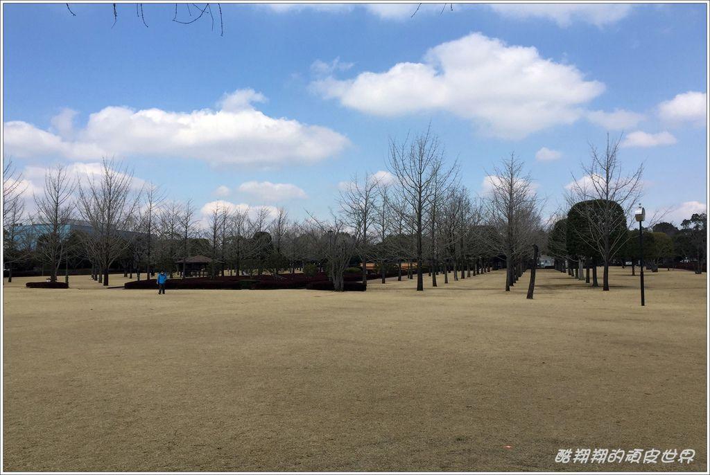中央綠地公園-09.JPG