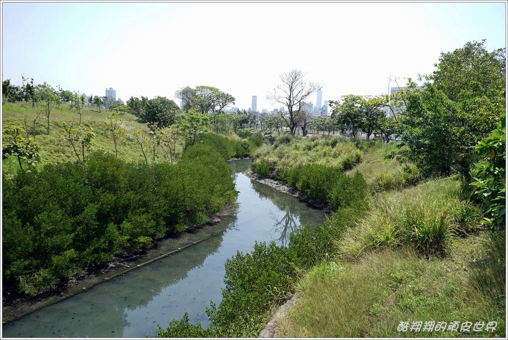 中都濕地公園-10.JPG