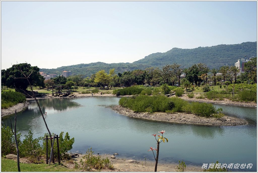 中都濕地公園-12.JPG