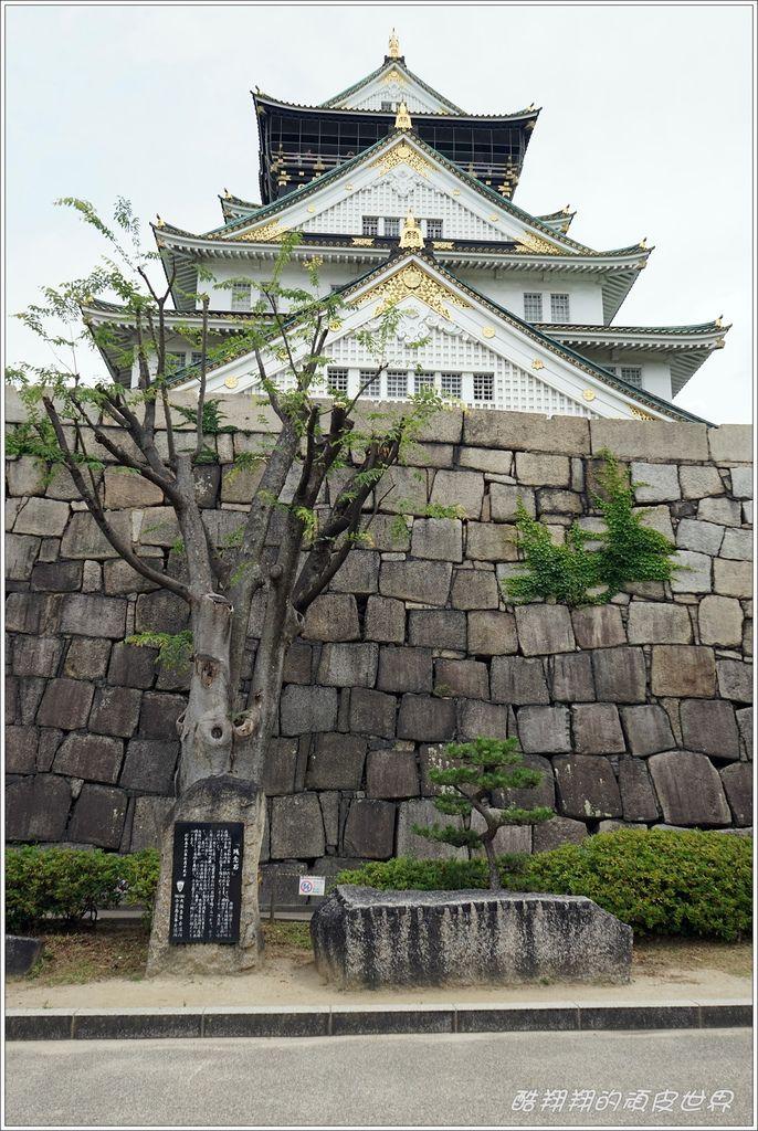 大阪城-24.JPG
