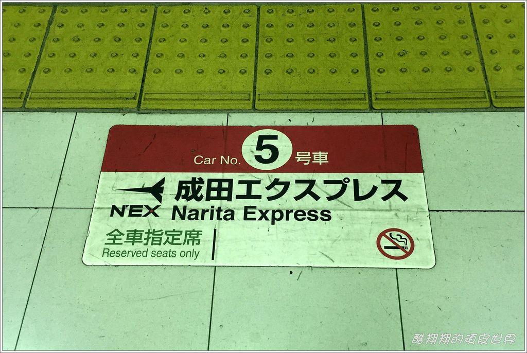 NEX06.JPG