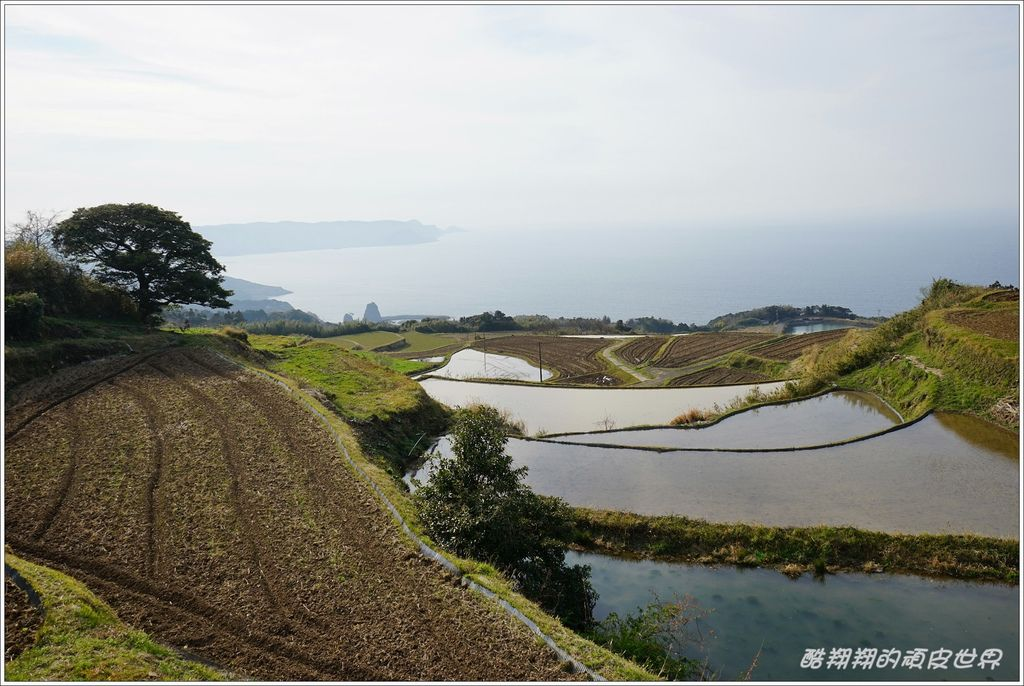 東後煙棚田-05.JPG