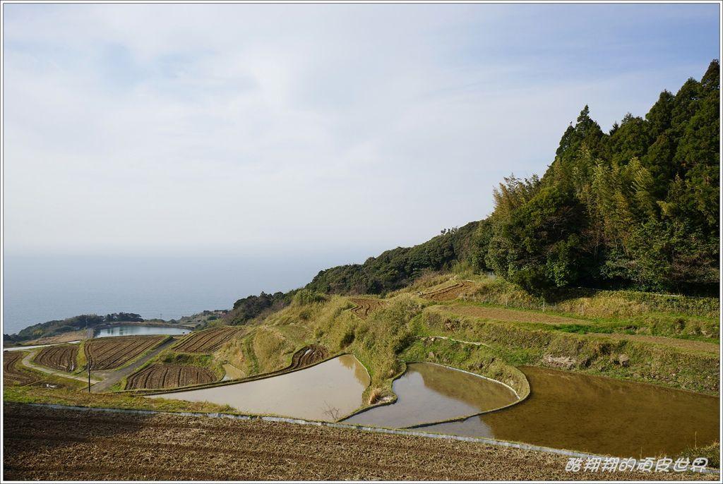 東後煙棚田-06.JPG
