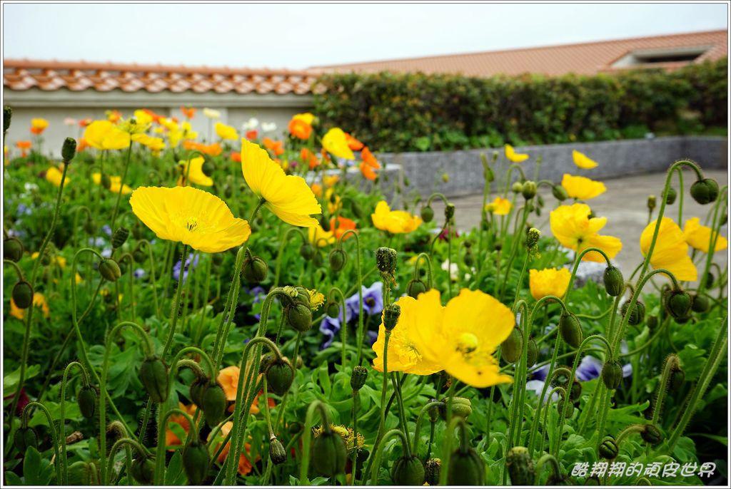 西長門渡假村-34.JPG