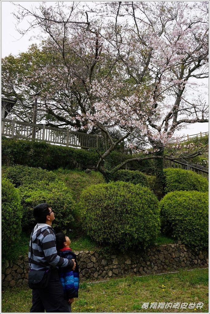 火之山公園-14.JPG