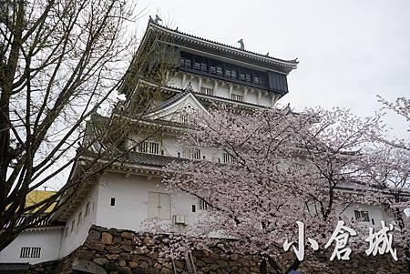 181小倉城.JPG