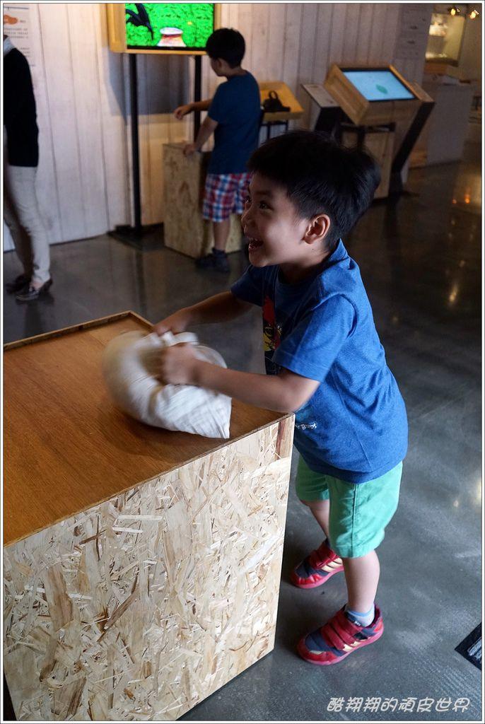 坪林茶博物館-24.JPG