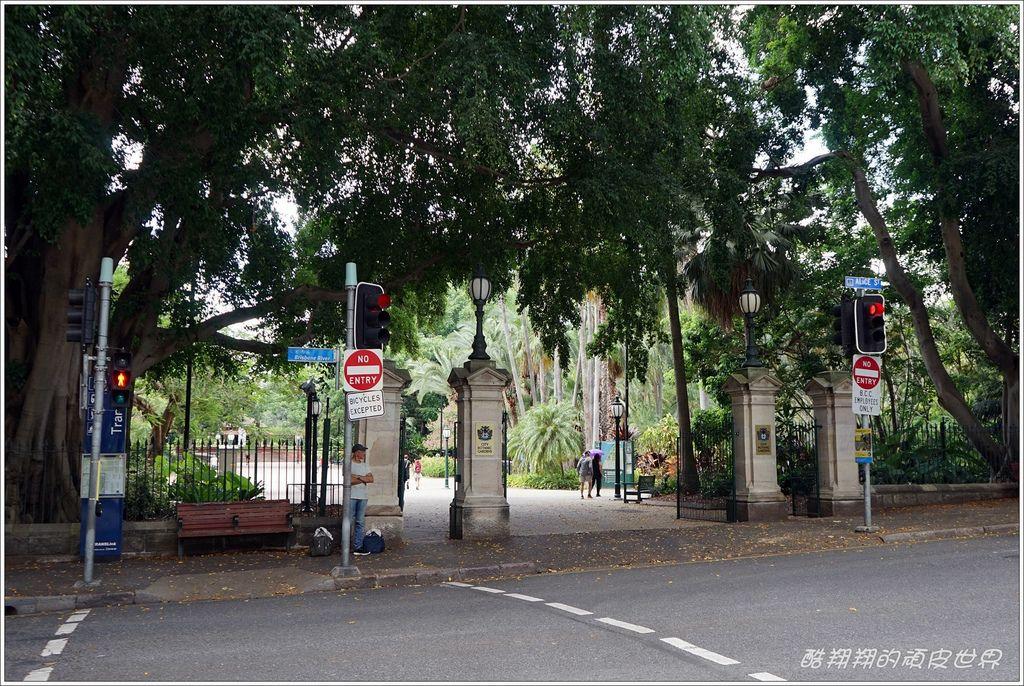 市立植物園-01.JPG
