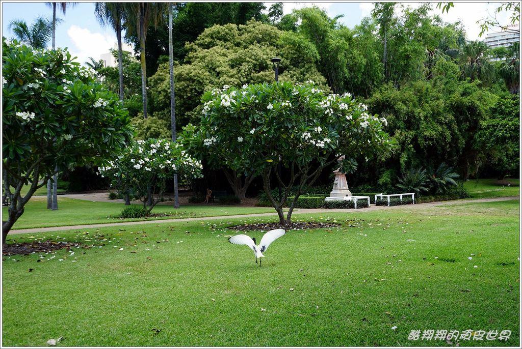 市立植物園-11.JPG
