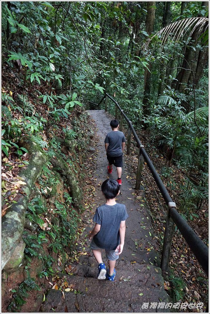 自然橋-07.JPG