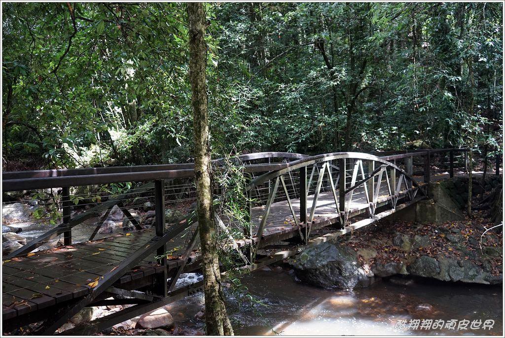 自然橋-19.JPG