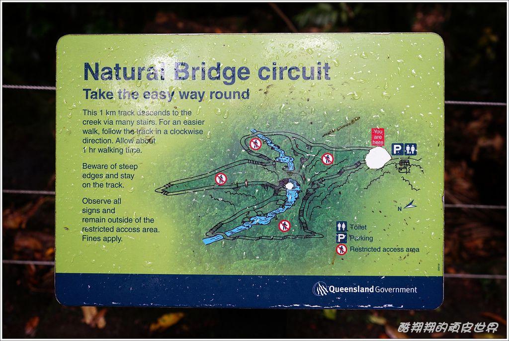 自然橋-24.JPG