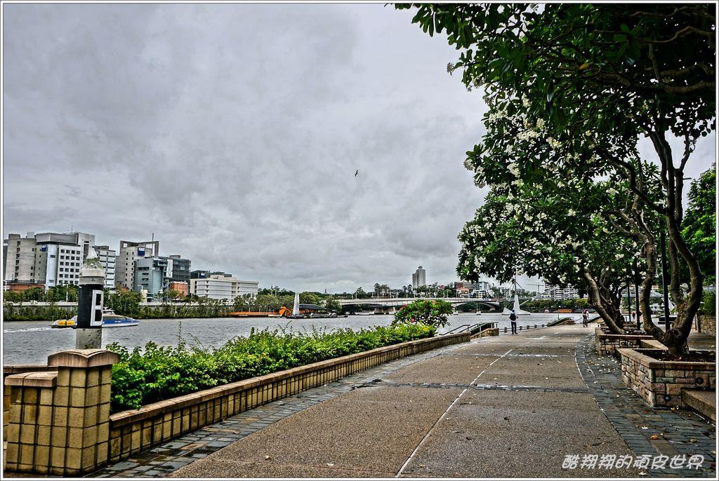 南岸公園-20.JPG