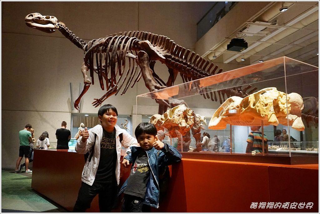 昆士蘭博物館-07.JPG