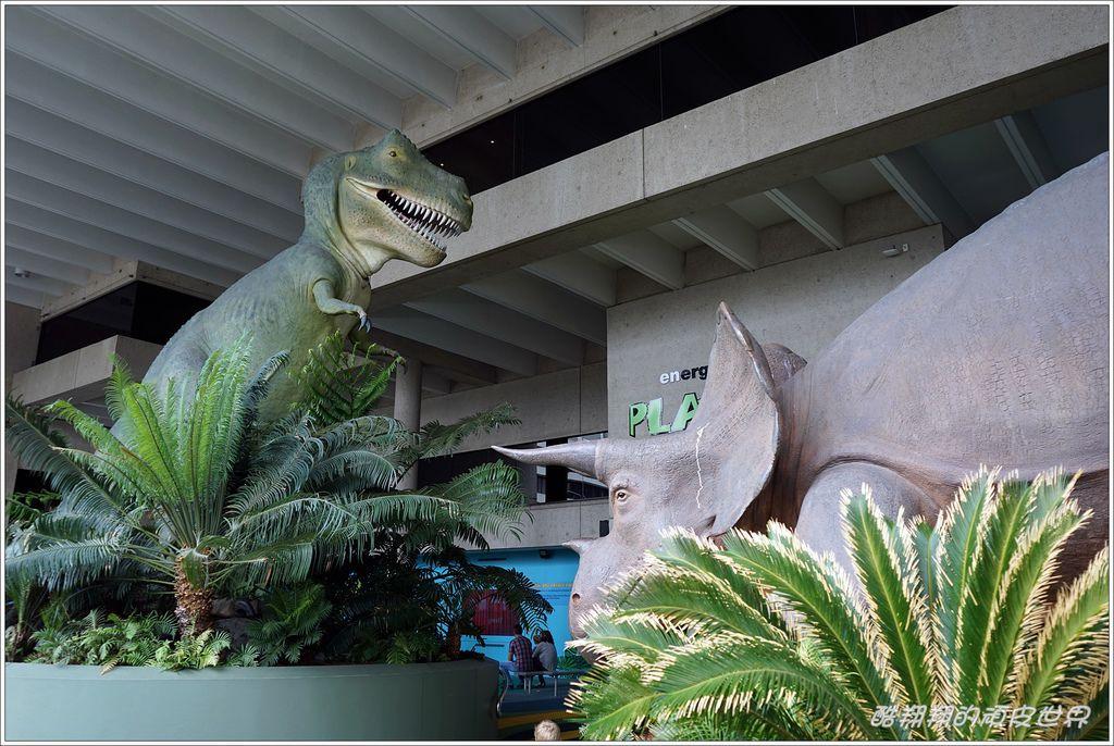 昆士蘭博物館-17.JPG