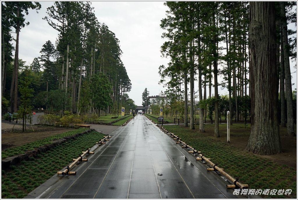 松島-28.JPG