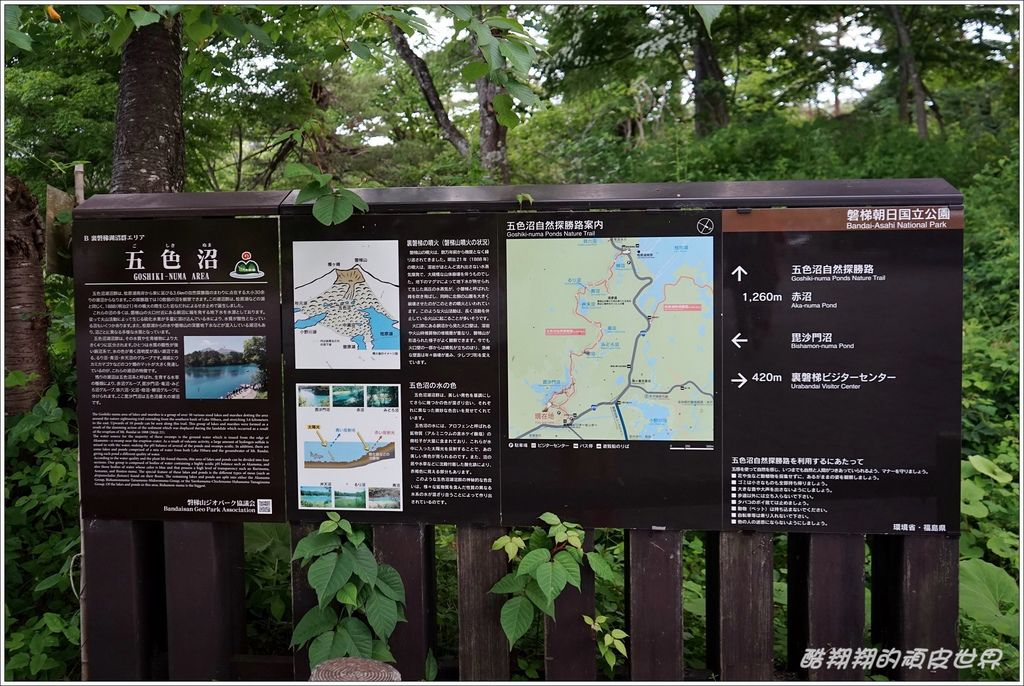 五色沼-24.JPG