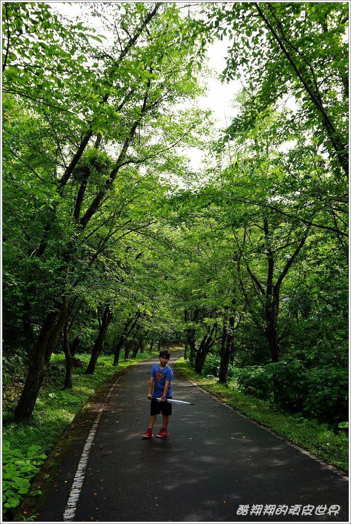 向羽黑山城-09.JPG