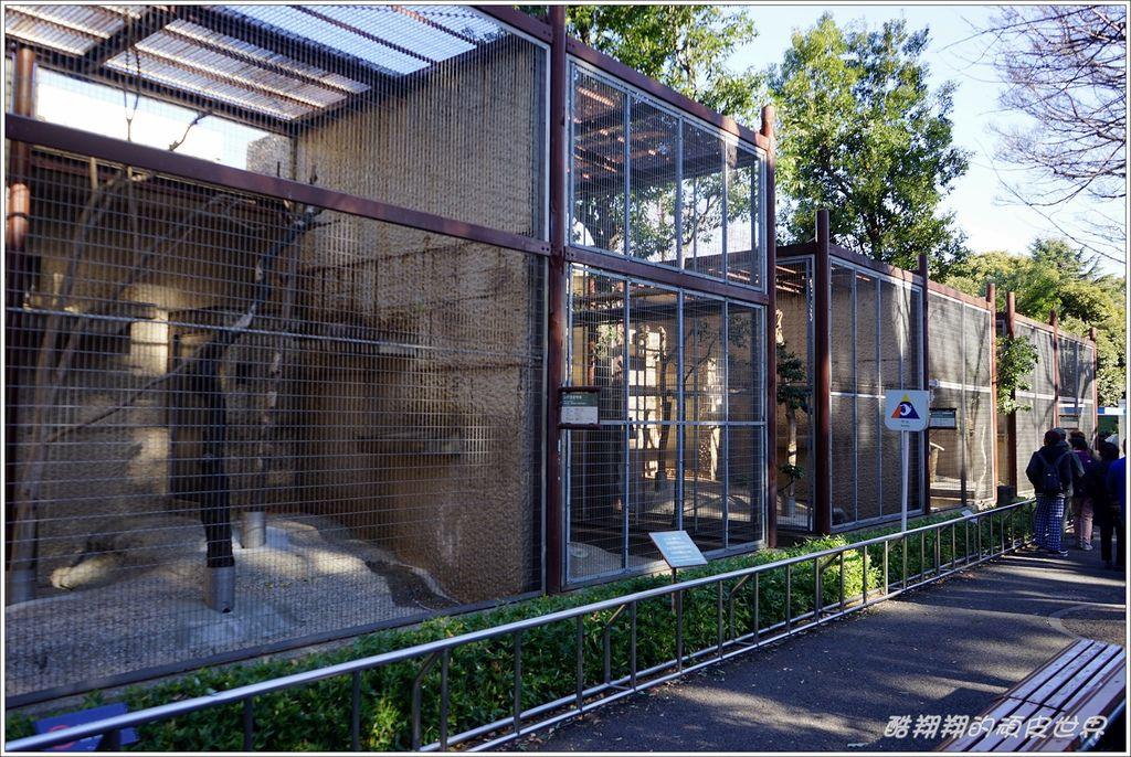 上野動物園-04.JPG