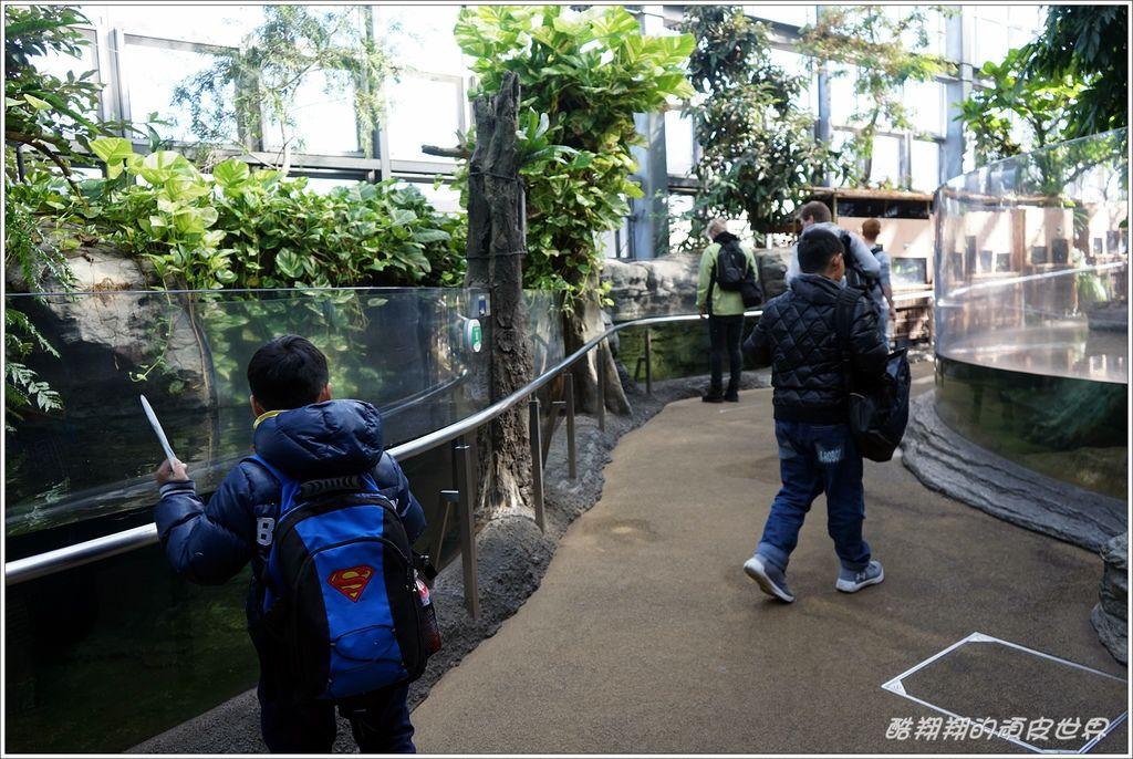 上野動物園-21.JPG