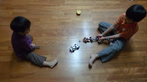 LEGO 7970 j