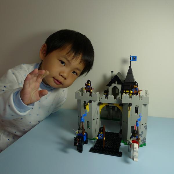 LEGO 6074 h