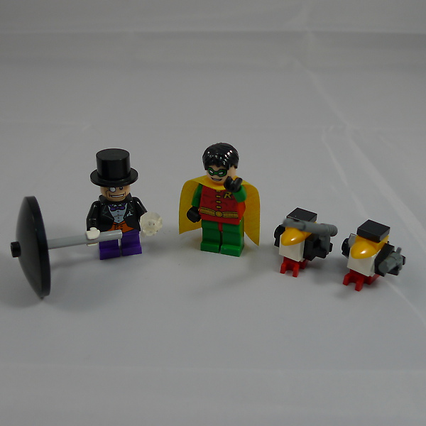 Batman 7885 b