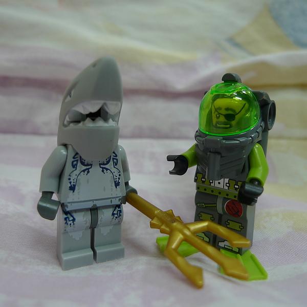 LEGO 8057 d