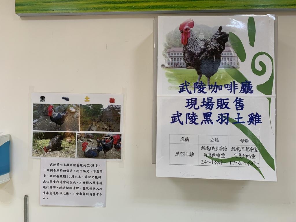 台東戒治所咖啡館-黑羽土雞