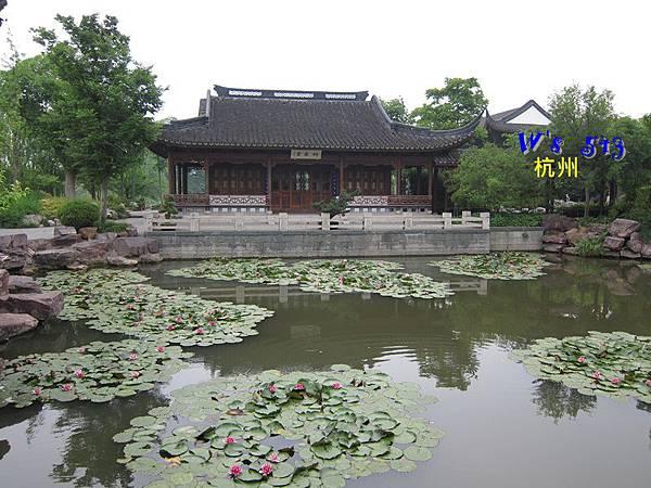 IMG_5322杭州西溪