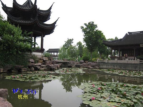 IMG_5327杭州西溪