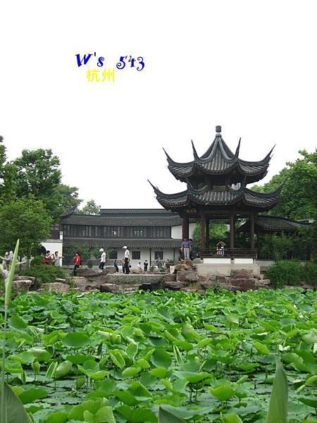 IMG_5342杭州西溪