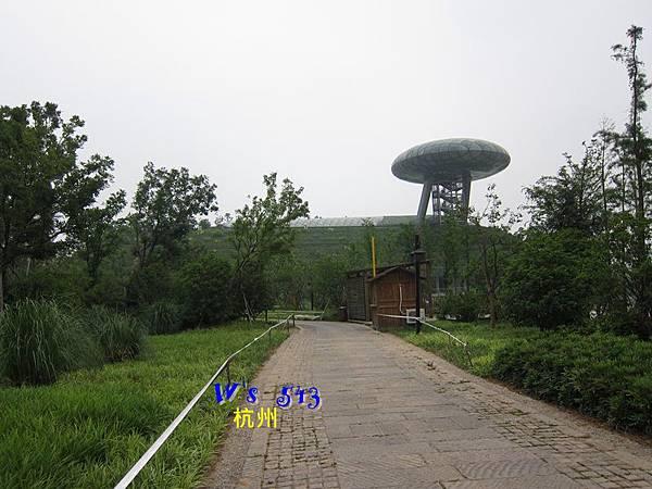 IMG_5353杭州西溪