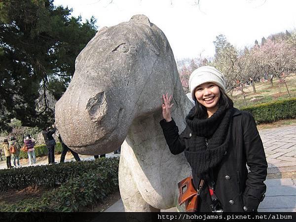 IMG_2294南京明孝陵