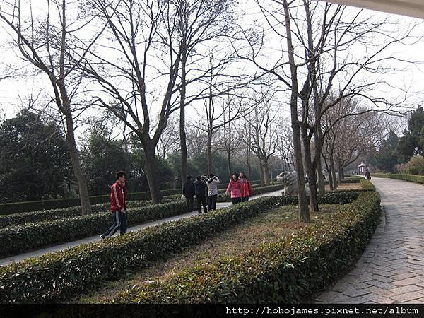 IMG_2297南京明孝陵