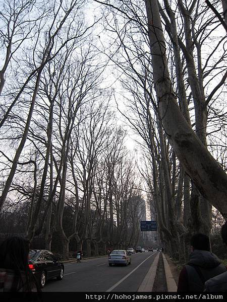 IMG_2366南京中山陵