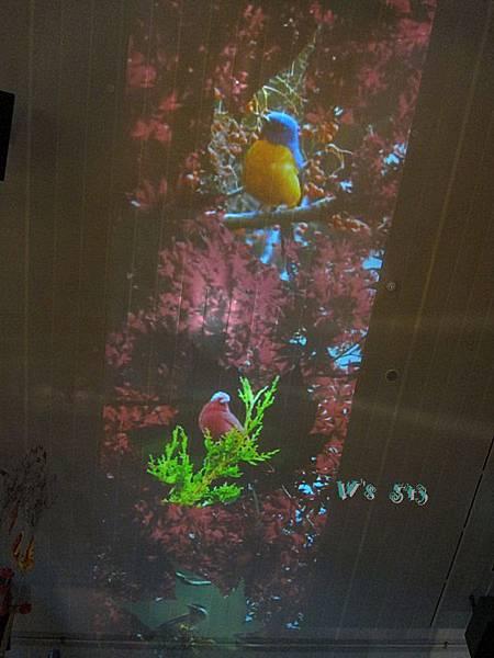 宜蘭IMG_2608蘭陽博物館