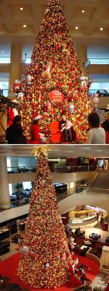 晶華酒店聖誕樹