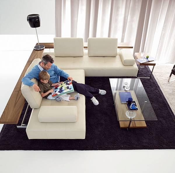 Rolf Benz sofa_dono_13