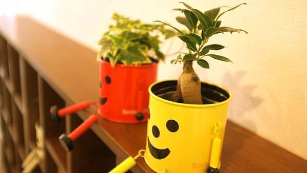 微笑小植物