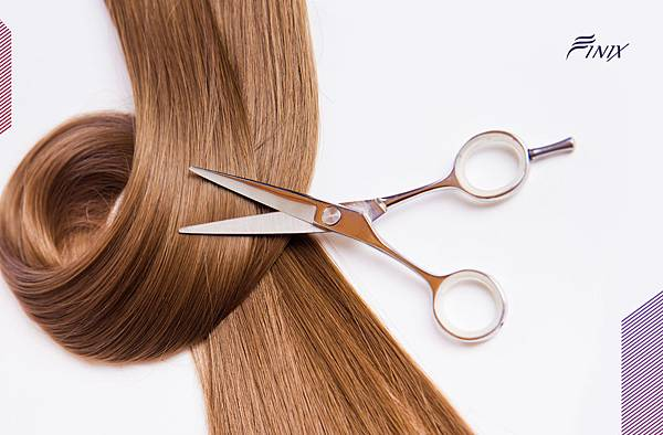 品牌-包裝設計-形象設計-Finix專業外銷剪刀-www.holycow.com.tw-03