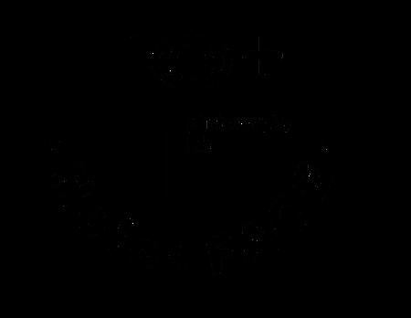 Holoface logo.png