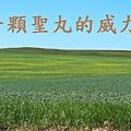 landscape-1052514_960_720.jpg