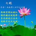 lotus-563456_960_720.jpg