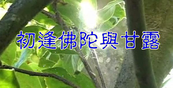 初逢佛陀与甘露.jpg