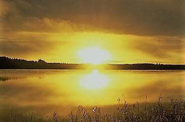 sun-1036857_640.jpg