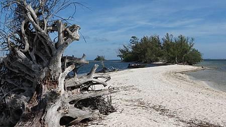 beach-750924_640.jpg
