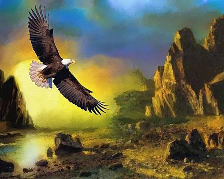 eagle-772480_640.jpg